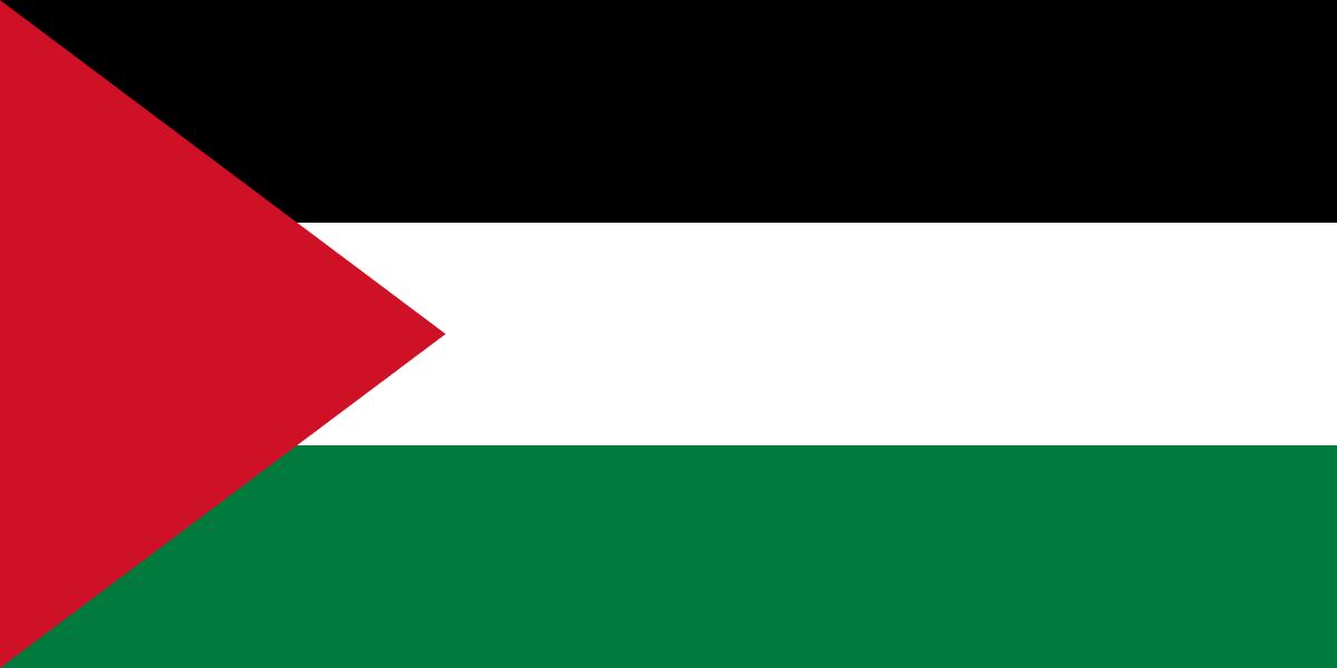 파일:팔레스타인 국기.png