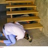 Székelyzsombor 2006 - img19.jpg