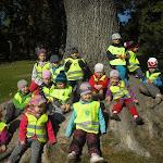 Sběr kaštanů a žaludů v Klamovce 1.třída Pod Lipkami 2.10.2013