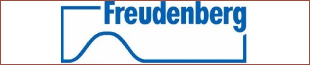 http://www.freudenberg.com/de/Seiten/default.aspx