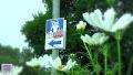 Rábalapátolás-2011 (Csörötnek-Csákánydoroszló Kajak-Kenu Futam) A videó megtekintéséhez kattints a Picasa albumra! A filmet a WEKING-es fiúk készítették!