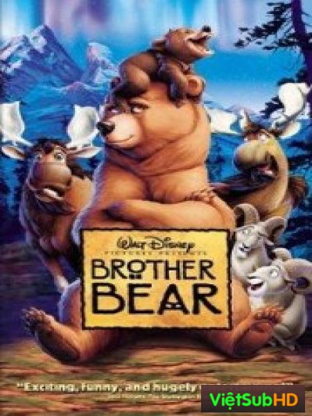 Anh Em Nhà Gấu