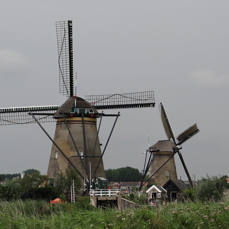 Day_6_Kinderdijk_48.JPG