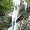 RAVIN DU CELY (vallée d'Ossau) : le 15 mai 2011  avec Malibu, Coco, Jérome, Fred et Sophie. ______________________________________