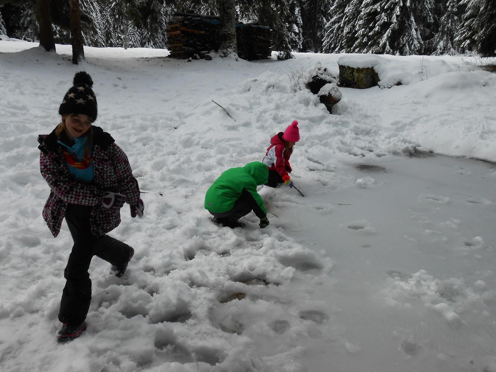 MČ zimovanje, Črni dol, 12.-13. februar 2016 - DSCN4984.JPG