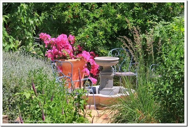160515_PenceGardenTour_Garden4_008