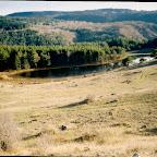 2002 - Kızılcahamam Kampı (29).jpg