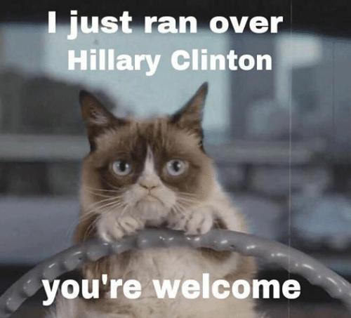 [ran+over+hillary+cat%5B4%5D]