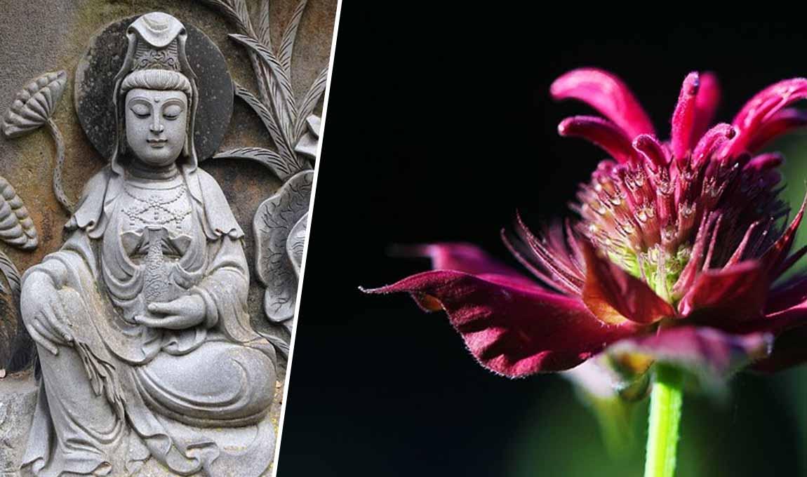 prática mindfulness