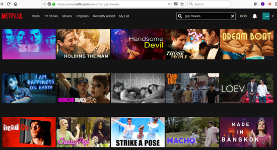 Netflix Gay Movies