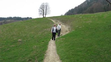 Photo: D4300476 Kroscienko - spacer na zbocza Wysokiej