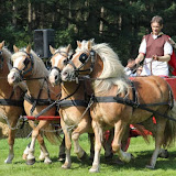 Paard & Erfgoed 2010