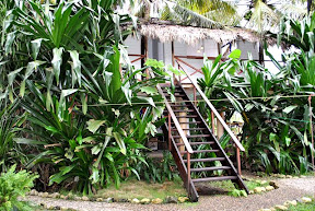 tarzan house - esterno