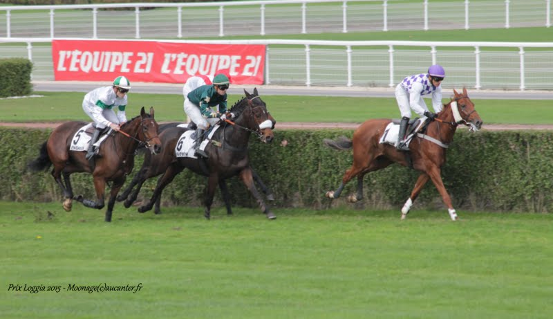 Photos Enghien 24-10-2015 IMG_5884