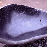 skulp02