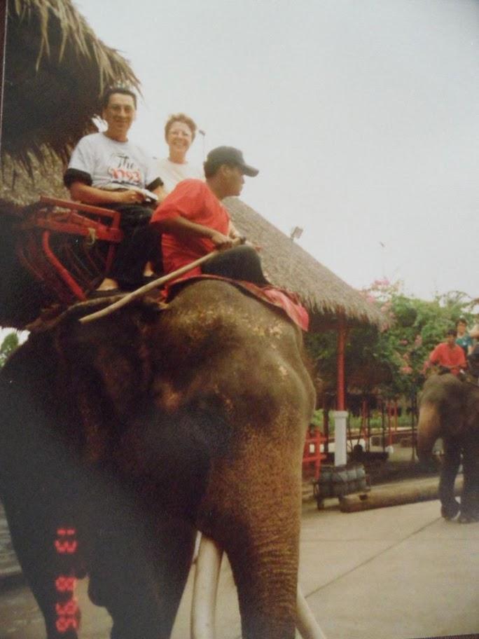 Bangkok'ta fil gösterisi