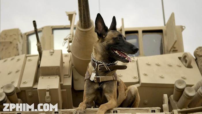 Ảnh trong phim Chú Chó Max - Max 1