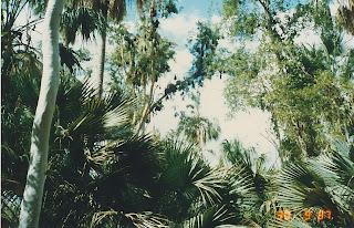 1430Mataranka Springs