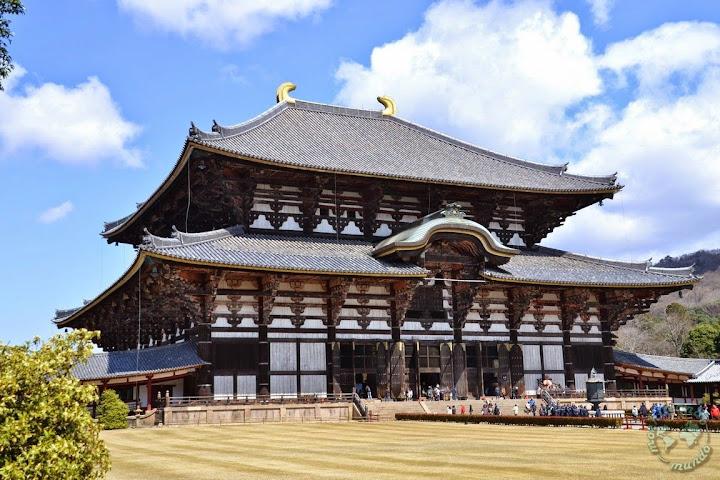que ver y hacer en Nara