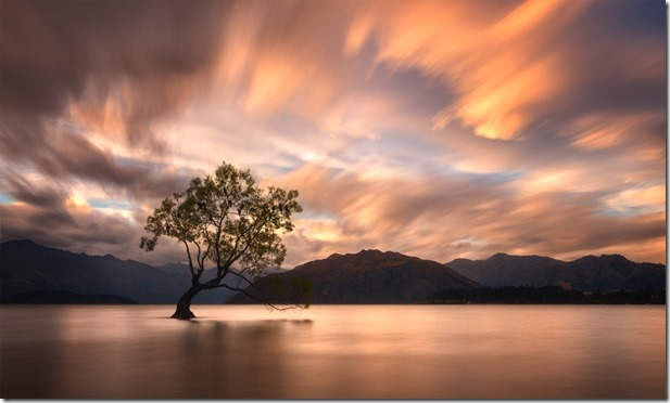 That-Wanaka-Tree-Sunset-5
