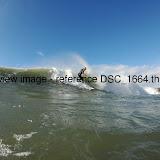 DSC_1664.thumb.jpg