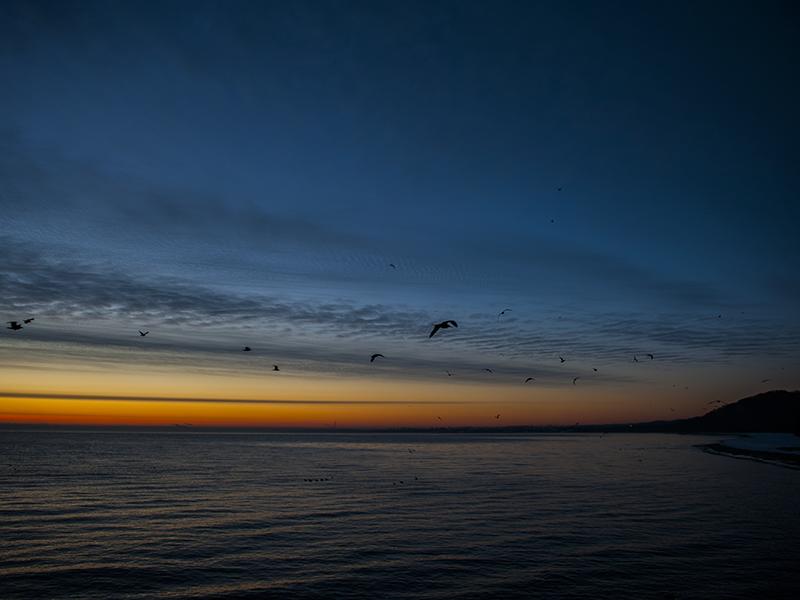 Last sunrise 2014 (3).png