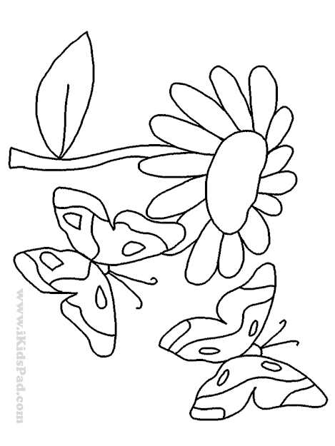 Elegant Floral Coloring Pages