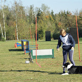 THS Herbstprüfung mit Vereinsmeisterschaft 2015 - DSC03436%2B%2528Gro%25C3%259F%2529.JPG