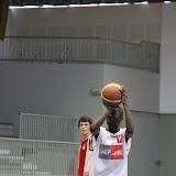 Basket 336.jpg