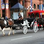 Кроме туристического автобуса по Филадльфии можно покататься в карете с лошадками.
