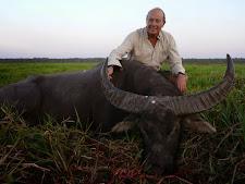 water-buffalo-hunting-safaris-29.jpg