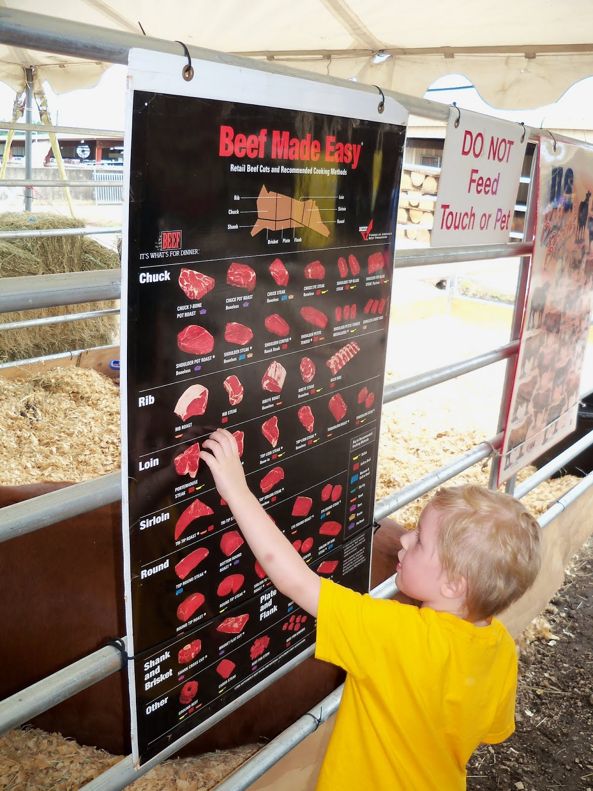 Fort Bend County Fair 2015 - 100_0339.JPG
