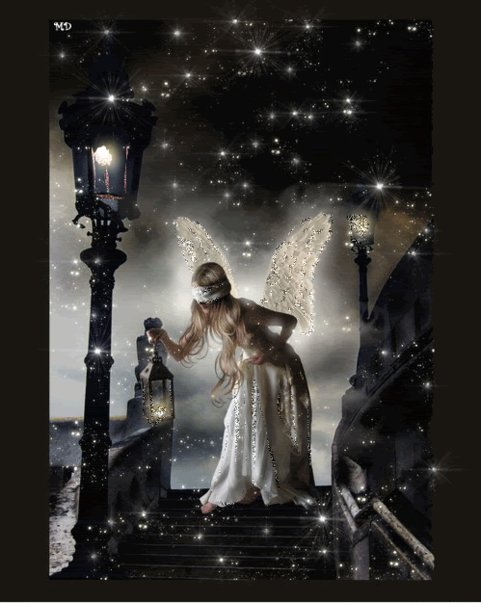 Night Shining Fairy, Fairies Girls