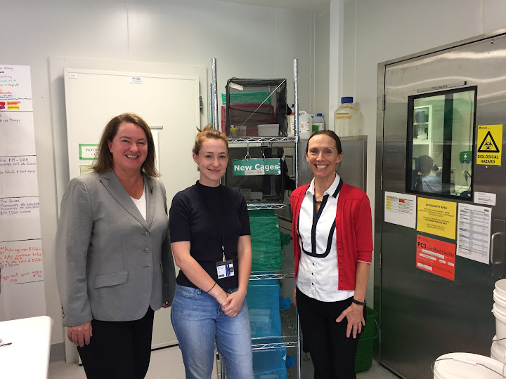 Touring the lab of the World Mosquito Program at Monash University