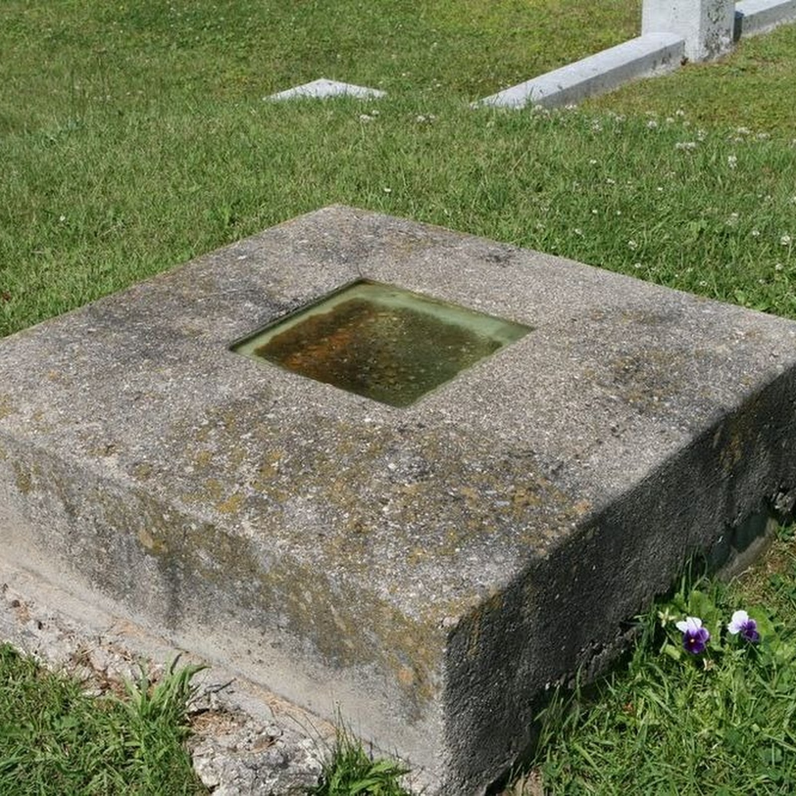 The Grave With A Window