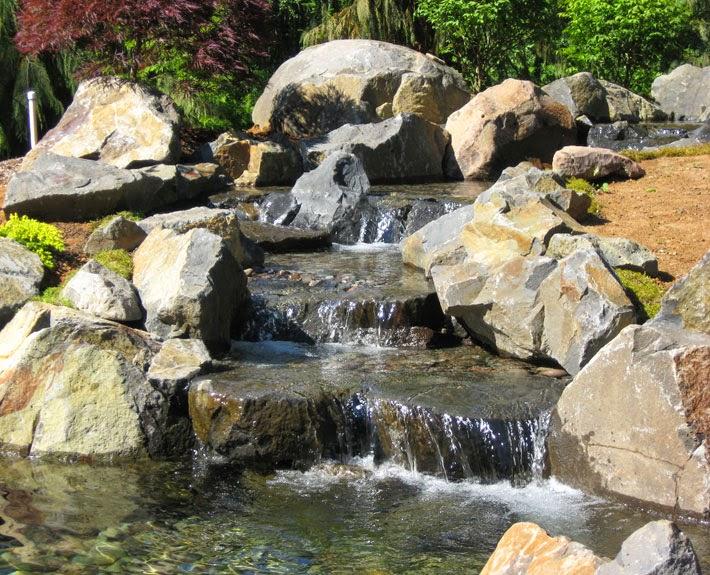 waterfall-koi-pond-siedel1