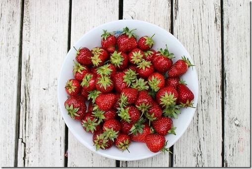 strawberries-986628_640