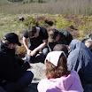 Kallioperägeologian kenttäkurssi kevät -09 - DSC01678.JPG