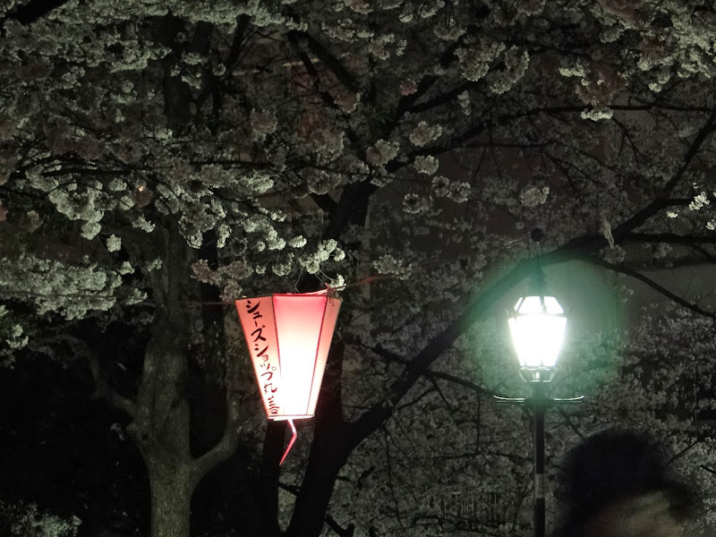 2014 Japan - Dag 3 - roosje-DSC01379-0024.JPG