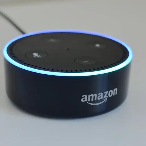 Do You Have an Amazon Echo Dot?
