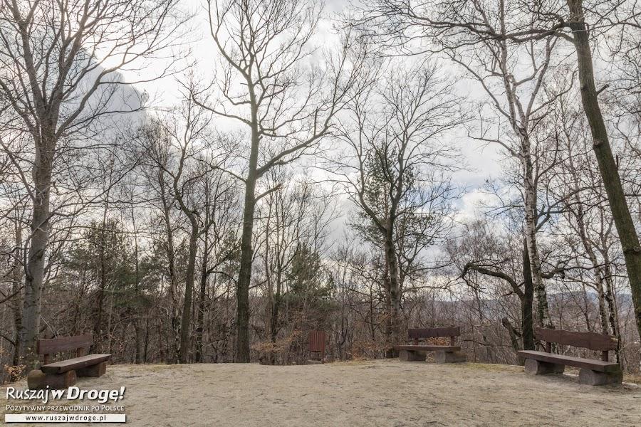 Punkt widokowy na Górze Parkowej w Parku Miejskim
