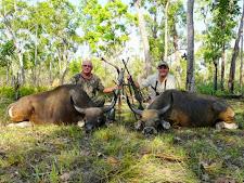 banteng-hunting-3.jpg
