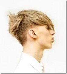 Undercut fade mens haircut