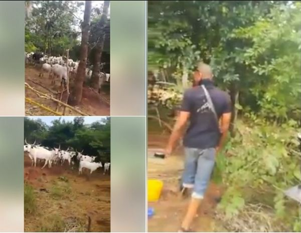 """Herdsmen Killing Us, R*ping Our Wives"" – Men Cry Out In Anambra"