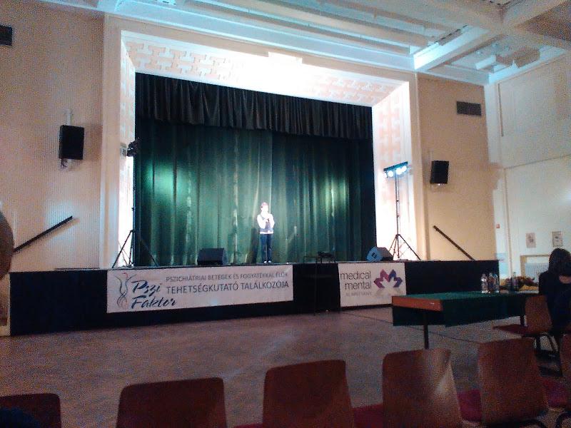 Tehetségkutató találkozós Sopronban Pszi Faktor Pszichiátriai betegek és fogyatékkal élők tehetségkutató találkozója rendezvényen - 2015.11.05.