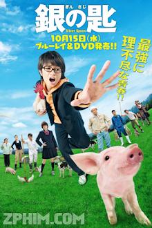 Gin No Saji Shiruba Supun - Silver Spoon (2014) Poster