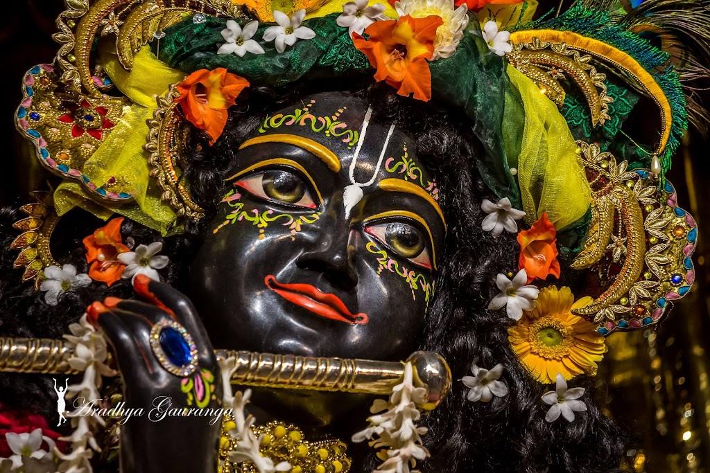 ISKCON Mayapur Deity Darshan 18 Jan 2017 (24)