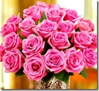 flowers_pink12