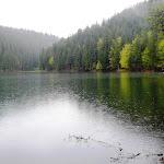 32. Pri jazere Sinevir.JPG