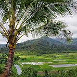 Hawaii 2013 - Best Story-Telling Photos - IMGP9436.JPG